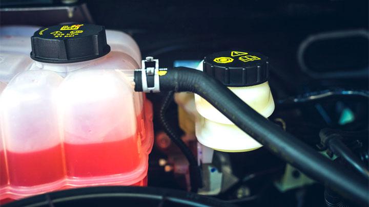 coolant-overflow-tank-hose