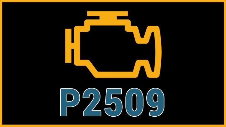 P2509 code